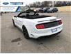 2021 Ford Mustang GT Premium (Stk: M5117666) in Wallaceburg - Image 15 of 8