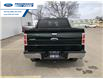 2012 Ford F-150 XLT (Stk: CKD34481T) in Wallaceburg - Image 9 of 14