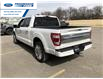 2021 Ford F-150 Limited (Stk: MFA82634) in Wallaceburg - Image 7 of 12