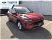 2021 Ford Escape SE (Stk: MUA12055) in Wallaceburg - Image 1 of 9