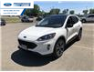 2021 Ford Escape SEL (Stk: MUA60584) in Wallaceburg - Image 9 of 17