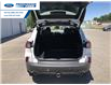 2021 Ford Escape SEL (Stk: MUA60584) in Wallaceburg - Image 14 of 17