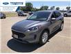 2021 Ford Escape SE (Stk: MUA60300) in Wallaceburg - Image 8 of 16