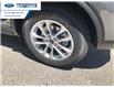 2021 Ford Escape SE (Stk: MUA60300) in Wallaceburg - Image 16 of 16