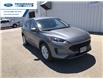 2021 Ford Escape SE (Stk: MUA60300) in Wallaceburg - Image 1 of 16