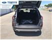 2021 Ford Escape SE (Stk: MUA60300) in Wallaceburg - Image 13 of 16