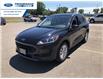 2021 Ford Escape SE (Stk: MUA55813) in Wallaceburg - Image 8 of 16