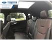 2021 Ford Edge Titanium (Stk: MBA36639) in Wallaceburg - Image 6 of 17