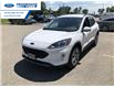 2021 Ford Escape SEL (Stk: MUA44072) in Wallaceburg - Image 8 of 15
