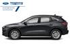 2021 Ford Escape SE (Stk: MUA60186) in Wallaceburg - Image 2 of 9