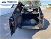 2021 Ford EcoSport Titanium (Stk: MC429828) in Wallaceburg - Image 14 of 16