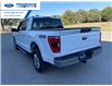 2021 Ford F-150 XLT (Stk: MFC52130) in Wallaceburg - Image 13 of 15