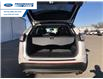 2017 Ford Edge SEL (Stk: HBB53456) in Wallaceburg - Image 11 of 15