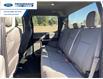 2019 Ford F-150 XLT (Stk: KFC90389) in Wallaceburg - Image 7 of 15