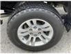2019 Chevrolet Silverado 1500 LD LT (Stk: K1125732) in Sarnia - Image 11 of 24