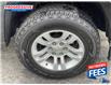 2019 Chevrolet Silverado 1500 LD LT (Stk: K1125732) in Sarnia - Image 15 of 24
