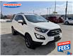 2018 Ford EcoSport SES (Stk: JC159729) in Sarnia - Image 6 of 28