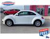 2016 Volkswagen Beetle 1.8 TSI Comfortline (Stk: GM622251) in Sarnia - Image 5 of 21
