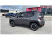 2017 Jeep Renegade Trailhawk (Stk: HPE75484) in Sarnia - Image 6 of 26