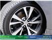 2016 Nissan Maxima Platinum (Stk: 14018A) in Brampton - Image 10 of 30