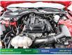 2017 Ford Mustang EcoBoost Premium (Stk: 14045) in Brampton - Image 12 of 30