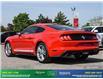 2018 Ford Mustang EcoBoost Premium (Stk: 14055) in Brampton - Image 5 of 29