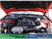 2018 Ford Mustang EcoBoost Premium (Stk: 14055) in Brampton - Image 12 of 29
