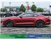 2019 Ford Mustang GT Premium (Stk: 14073) in Brampton - Image 3 of 30