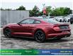 2019 Ford Mustang GT Premium (Stk: 14073) in Brampton - Image 5 of 30
