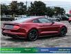 2019 Ford Mustang GT Premium (Stk: 14073) in Brampton - Image 7 of 30
