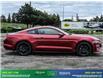 2019 Ford Mustang GT Premium (Stk: 14073) in Brampton - Image 8 of 30