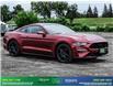 2019 Ford Mustang GT Premium (Stk: 14073) in Brampton - Image 9 of 30