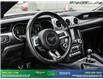 2019 Ford Mustang GT Premium (Stk: 14073) in Brampton - Image 16 of 30
