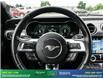2019 Ford Mustang GT Premium (Stk: 14073) in Brampton - Image 17 of 30