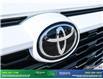 2019 Toyota RAV4 XLE (Stk: 14081) in Brampton - Image 13 of 30