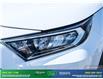 2019 Toyota RAV4 XLE (Stk: 14081) in Brampton - Image 14 of 30
