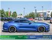 2017 Ford Mustang GT Premium (Stk: 13993A) in Brampton - Image 8 of 27