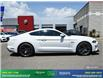 2019 Ford Mustang GT (Stk: 14099) in Brampton - Image 8 of 30