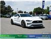 2019 Ford Mustang GT (Stk: 14099) in Brampton - Image 9 of 30