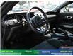 2019 Ford Mustang GT (Stk: 14099) in Brampton - Image 17 of 30