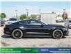 2017 Ford Mustang GT Premium (Stk: 14121) in Brampton - Image 8 of 30