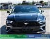 2019 Ford Mustang GT Premium (Stk: 14134) in Brampton - Image 2 of 30
