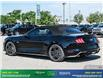 2019 Ford Mustang GT Premium (Stk: 14134) in Brampton - Image 5 of 30