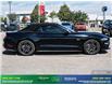 2019 Ford Mustang GT Premium (Stk: 14134) in Brampton - Image 8 of 30