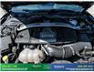 2019 Ford Mustang GT Premium (Stk: 14134) in Brampton - Image 12 of 30