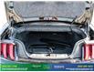 2019 Ford Mustang GT Premium (Stk: 14134) in Brampton - Image 15 of 30