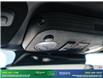 2019 Ford Mustang GT Premium (Stk: 14134) in Brampton - Image 27 of 30
