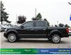 2020 Ford F-150 Limited (Stk: 14176) in Brampton - Image 3 of 30