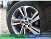 2017 Hyundai Elantra Limited SE (Stk: 14275) in Brampton - Image 7 of 28
