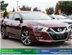 2016 Nissan Maxima Platinum (Stk: 14338) in Brampton - Image 9 of 30